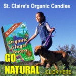 st claires organic candy